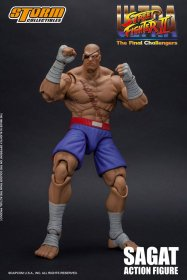 Ultra Street Fighter II: The Final Challengers Akční figurka 1/1