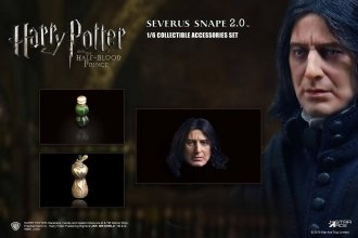 Harry Potter Accessories Set 2.0 for 1/6 Snape 1.0