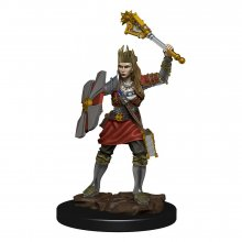 D&D Icons of the Realms Premium Miniature pre-painted Human Cler