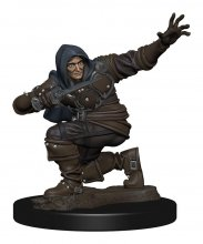 Pathfinder Battles Premium Miniature pre-painted Human Rogue Mal