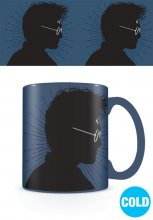 Harry Potter Heat Change Mug Magic Portrait