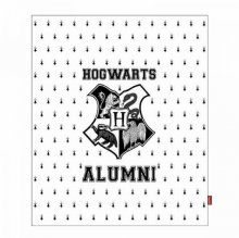 Harry Potter fleece deka Bradavice Alumni 125 x 150 cm
