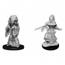 D&D Nolzur's Marvelous Miniatures Unpainted Miniatures Night Hag