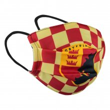 Harry Potter Kids Face Mask Gryffindor