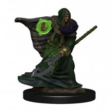 D&D Icons of the Realms Premium Miniature pre-painted Elf Druid