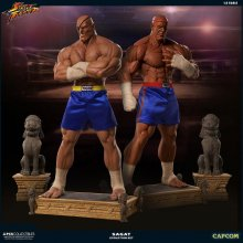 Street Fighter Statues 1/3 Sagat PCS Exclusive Evolution Set 93