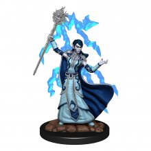 D&D Icons of the Realms Premium Miniature pre-painted Elf Wizard