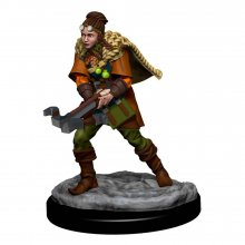 D&D Icons of the Realms Premium Miniature pre-painted Human Rang