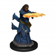 D&D Icons of the Realms Premium Miniature pre-painted Human Wiza