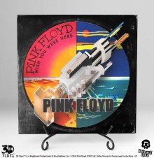 Pink Floyd 3D Vinyl Socha Wish You Were Here 30 cm