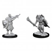 Pathfinder Battles Deep Cuts Unpainted Miniatures Human Champion