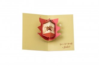 Harry Potter 3D Pop-Up Greeting Card Howler