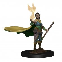 D&D Icons of the Realms Premium Miniature pre-painted Elf Female