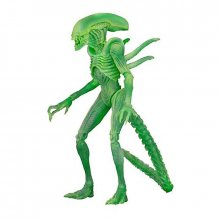Alien vs. Predator figurka Alien Warrior Glow in the Dark