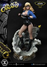 DC Comics Statues Black Canary & Black Canary Exclusive Bonus 69