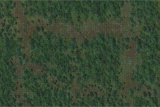 D&D Icons of the Realms: Battle Mat Forest