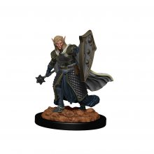 D&D Icons of the Realms Premium Miniature pre-painted Elf Male C